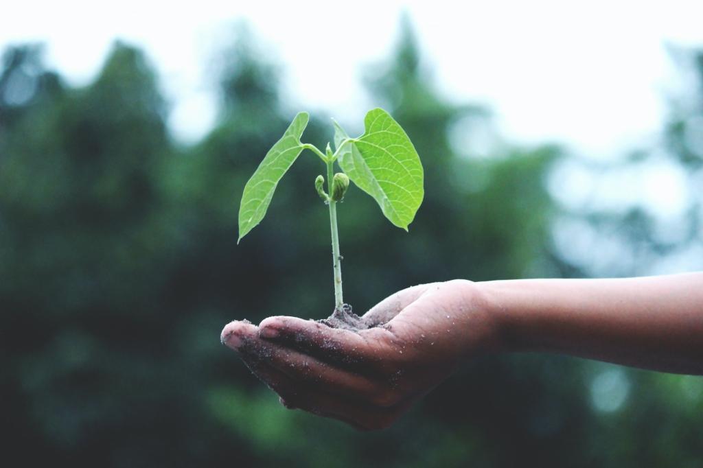 duurzaam-leven